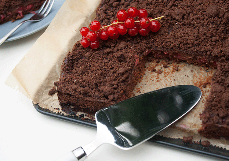 Schokoladiger Blechkuchen mit Johannisbeeren
