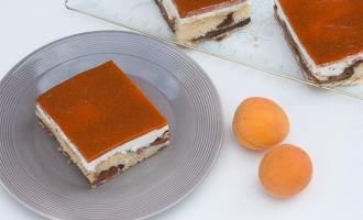 Aprikosen-Blechkuchen im Donauwellen-Style
