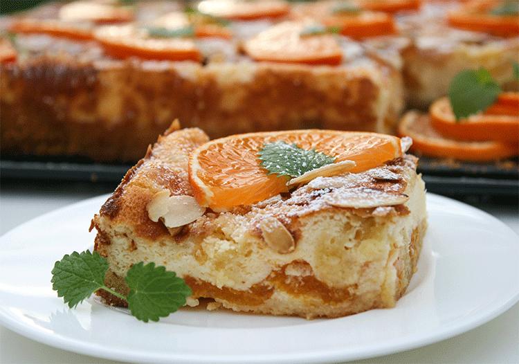 Käse-Quark-Blechkuchen mit Mandarinen