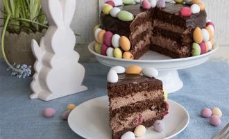 Schokoladen-Sahnetorte mit Himbeeren