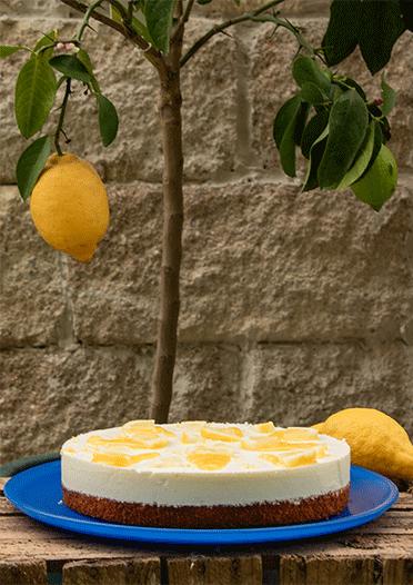 Zitronen Schmandkuchen