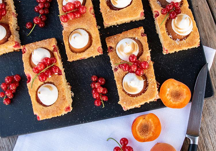 Blechkuchen mit Aprikosen und Johannisbeeren